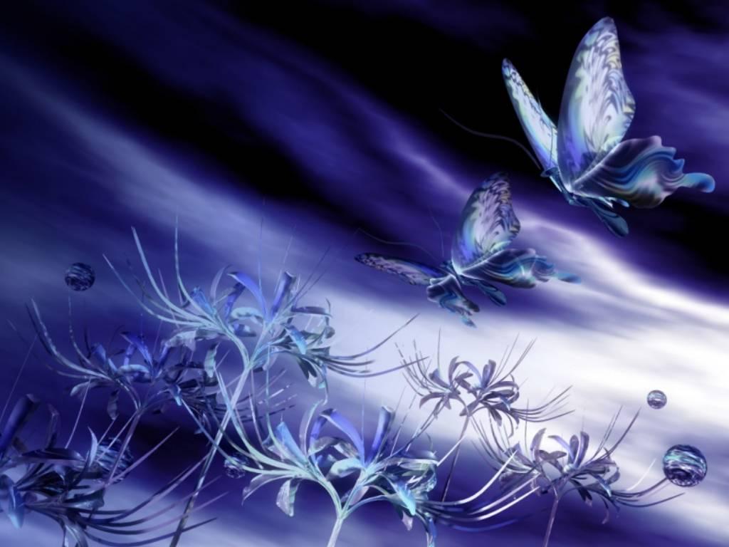Image f erique - Images de papillon ...